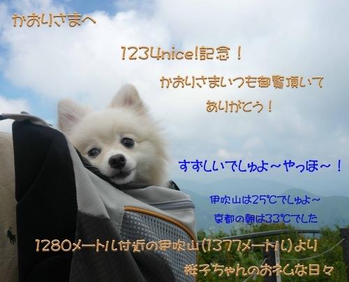 2017258