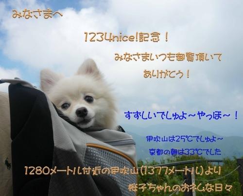 2017260