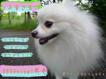 3333記念_みなさまへ_edited-1.jpg